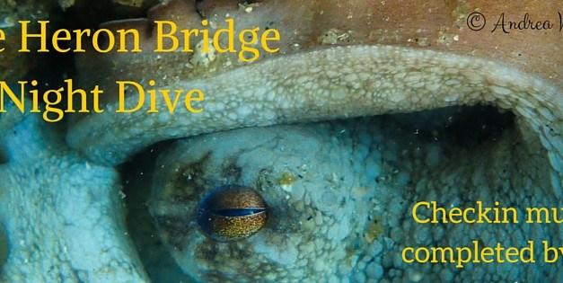 Blue Heron Bridge Halloween Night Dive: October 29th