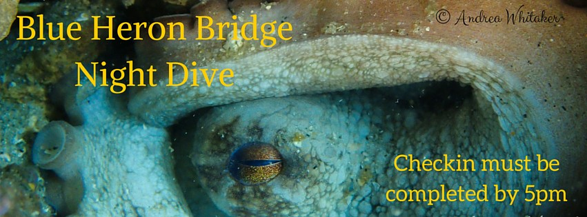 Blue Heron Bridge Night Dive: October 15th