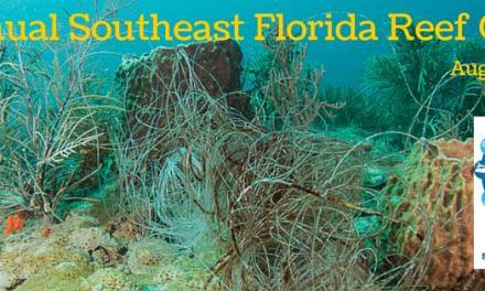 6th Annual Southeast Florida Reef Cleanup