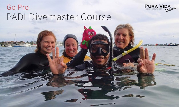 DIVEMASTER COURSE: MAY