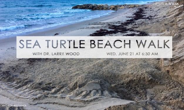 JUNE 21: MORNING SEA TURTLE EDUCATION WALK