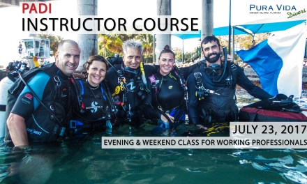 IDC – EVENING & WEEKEND COURSE