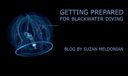 BLACKWATER DIVING: GETTING PREPARED