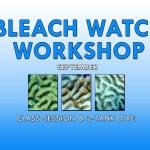 SEPT. BLEACH WATCH WORKSHOP & DIVE