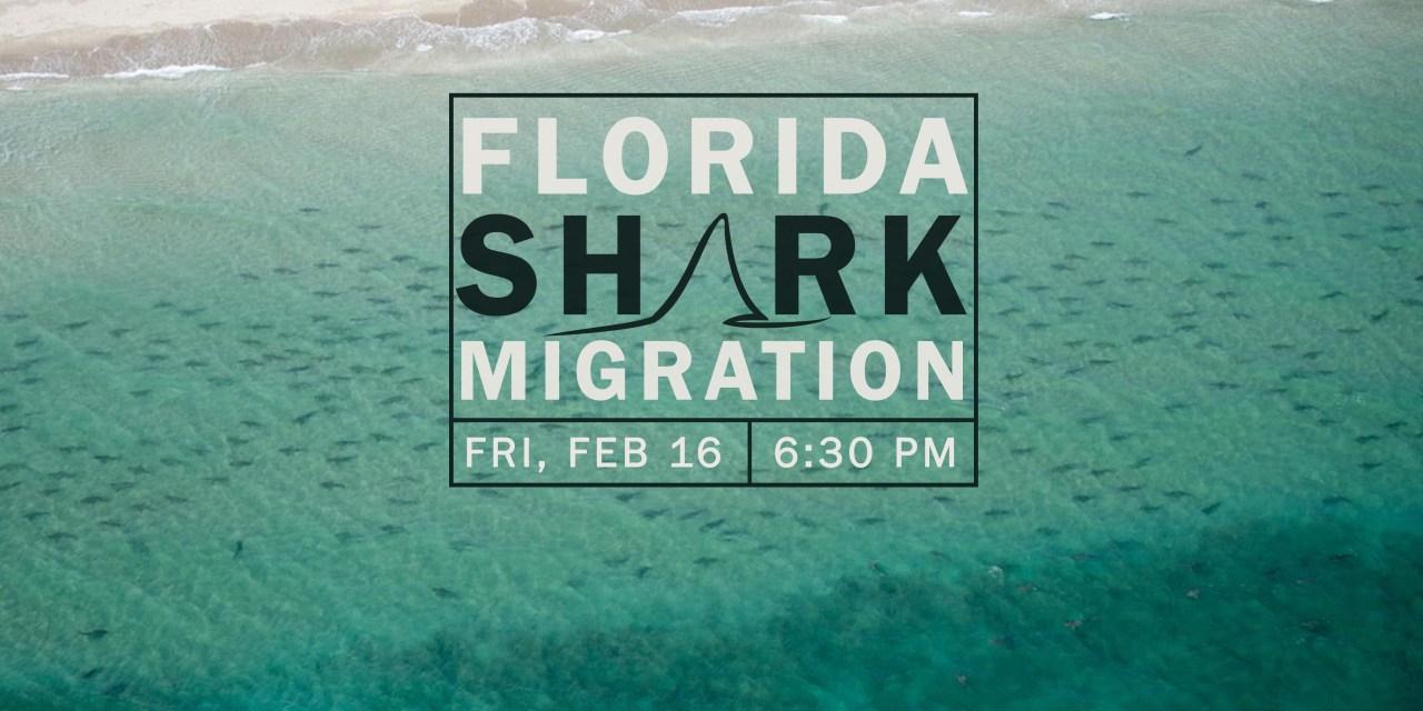 SOCIAL NIGHT: FLORIDA SHARK MIGRATIONS