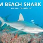 FEB 25: PALM BEACH SHARK DIVE
