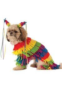 Brand New Pinata Pet Dog Costume
