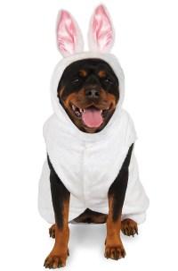 Brand New Bunny Rabbit Big Dog Pet Dog Costume | eBay