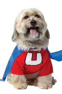Brand New Underdog Superhero Dog Pet Costume | eBay