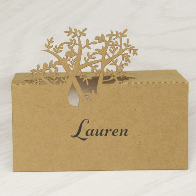Place Cards With Guest Names Printed Money Back Guarantee Pure