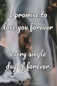 I promise to love you forever every single day of forever ...