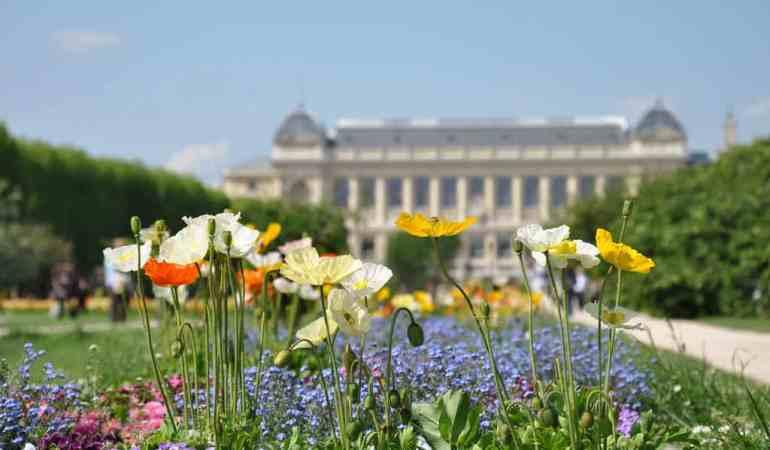 Jardin des Plantes: Gather Your Group at Paris' Finest Garden