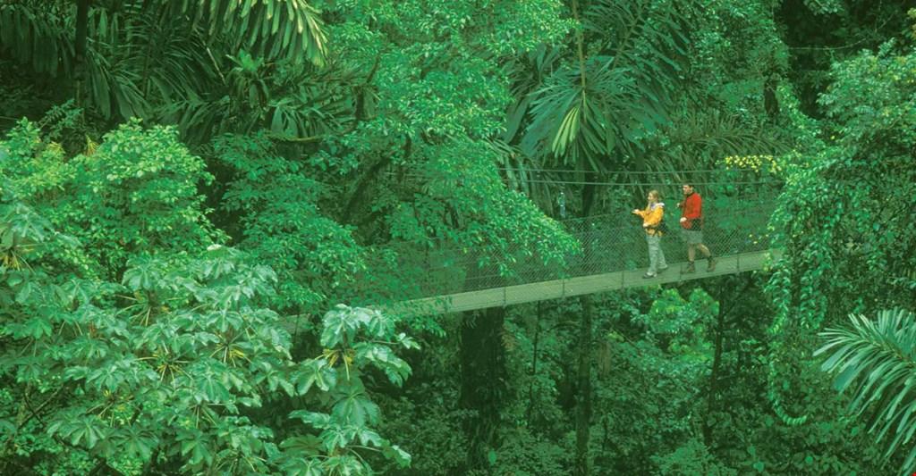 Costa Rica reserva Monteverde. Foto Costa Rica Expeditions. Google Images