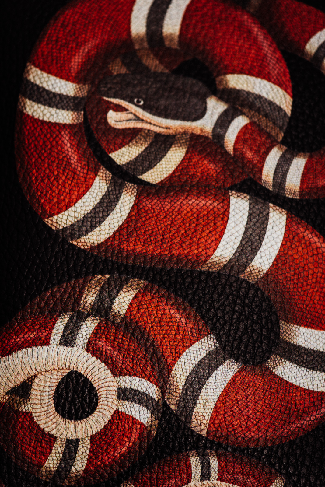High Resolution Fall Wallpaper Take A Chic Walk On The Wild Side With Gucci Cruise 2017