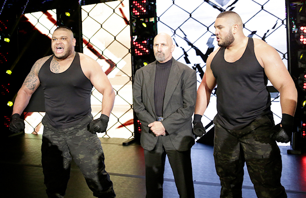 Image result for authors of pain wwe