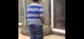 شاهد : ماذا فعل كلب في طفل أثار غضبه !!