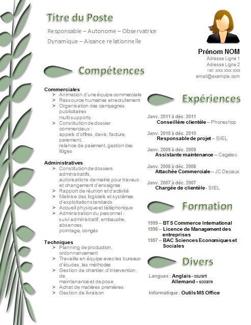 comment classer competences cv