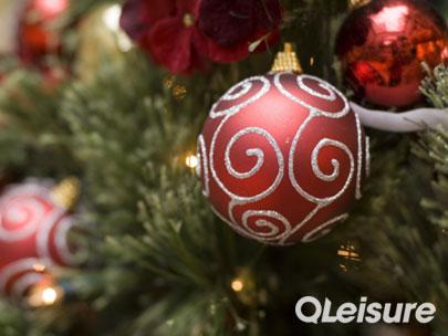 Christmas Parties QLeisure