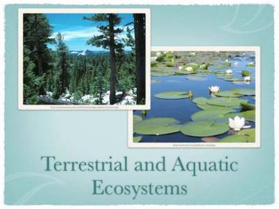 Types of Geographic Ecosystems - QS Study