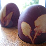 Queen Lila Dye Eggs with onion peelings tutorial (18)