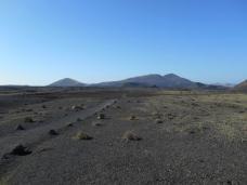 Parc des volcans