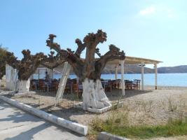 Restaurant Stamatis à Livaldi (Serifos)