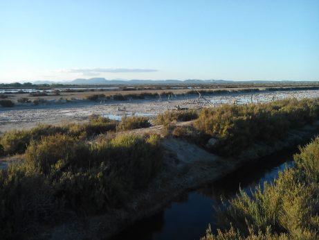 Derrière la plage d'Es Trenc : les salines