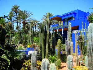 Jardin Majorelle, une belle villa entourée d'un beau jardin tropical