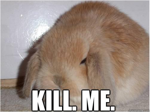 Sad Baby Girl Wallpaper Kill Me Fat Rabbit Quickmeme