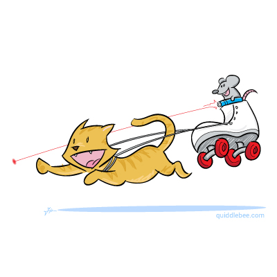Feline Locomotion