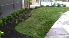 curved landscape bed, stone pavers st louis