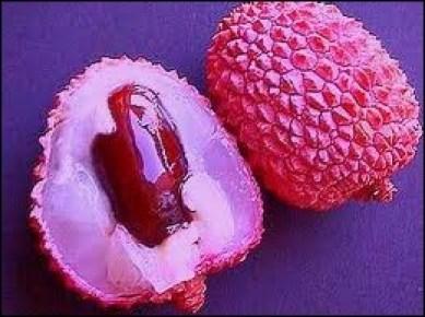 Ce fruit est une petite sphère, parfois un peu en forme de cœur, entourée d'une enveloppe coriace d'aspect écailleux qui prend une couleur rose à rouge à maturité.