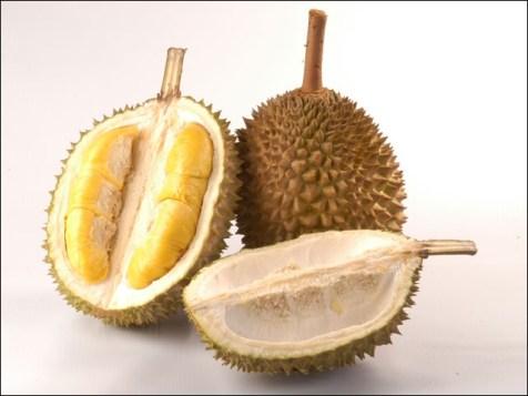 Ce fruit, n'est récolté que dans le sud-est de l'Asie. Il se présente comme une grosse baie ovoïde.