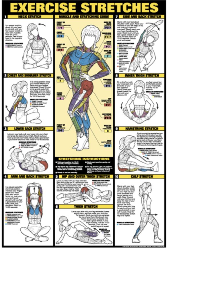 stretches chart - Divingthexperience