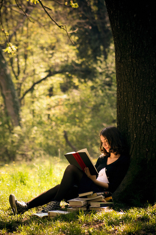 Girl In A Tree Reading A Book Wallpaper Quotes About Reading Under A Tree 17 Quotes