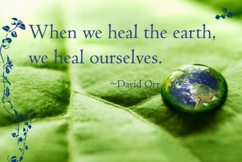 Environment Quotes Inspiration Comfortable Inspirational Environment Quotes To Create Global