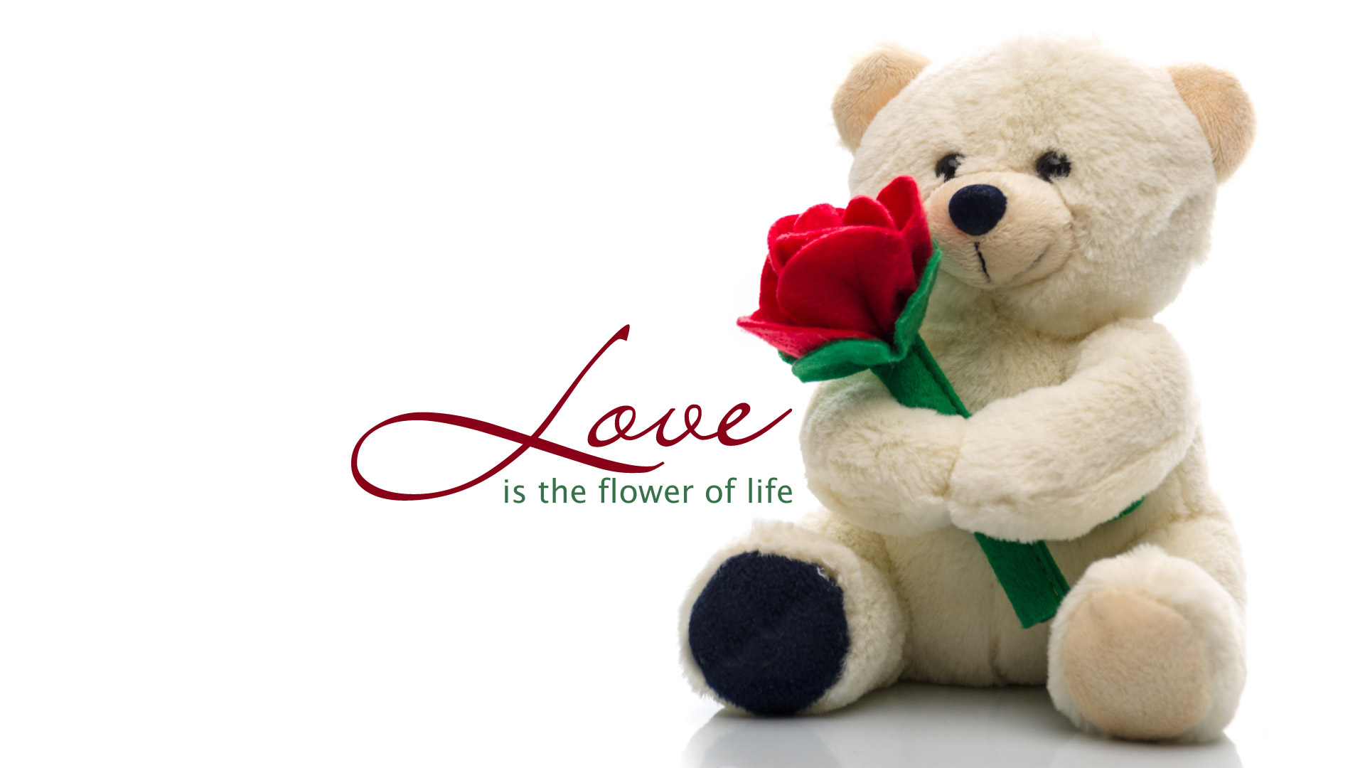 Cute Teddy Bear Live Wallpaper Free Download 35 Best Happy New Year 2019 Teddy Bear Pictures With