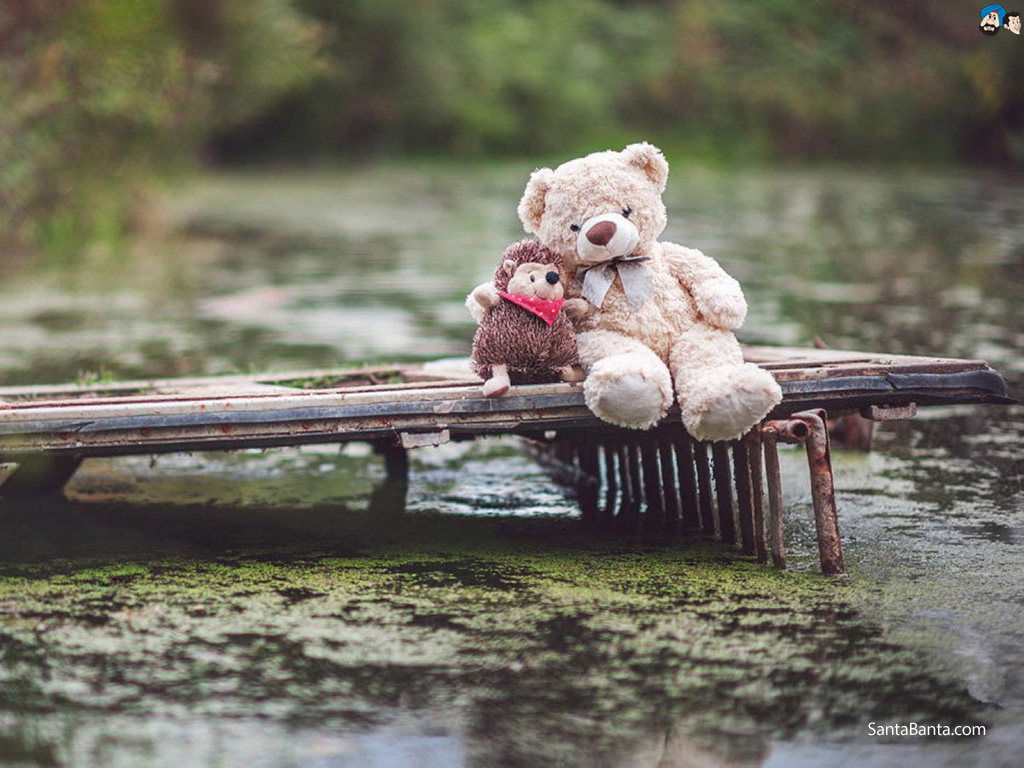 Cute Love Quotes Wallpapers For Him 35 Best Happy New Year 2019 Teddy Bear Pictures With