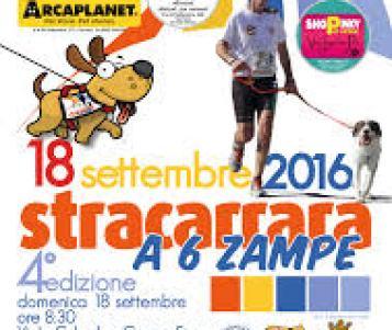 Grande successo per la quarta edizione della Stracarrara a sei zampe