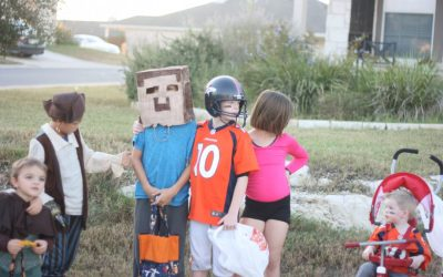 What to Expect from Minecraft Motherhood