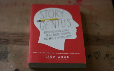 An Invaluable Book About Story Construction