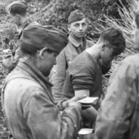 Pervitine, la drogue des nazis