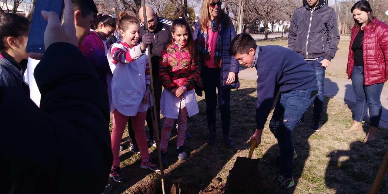 Alumnos plantan árboles en las plazas de la ciudad