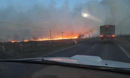 Tres dotaciones de Bomberos para extinguir incendios rurales
