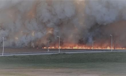 15 hectáreas de soja se quemaron en General Roca