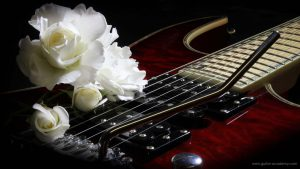 7_string_white_rose_1
