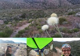 """My 1st time as """"Official Race Caboose"""". Req: 13.1mi & finish #DFL It took nearly 5hrs but the lady completed her first trail half w/ ~1.7k ft. gain, 5k ft. elev. & some technical terrain. #nuunlife #desertdash #trailsoffury #trailrunning [instagram]"""