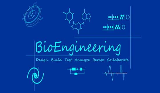 Biomedical Engineering  Job Description And Salary In India - biomedical engineering job description