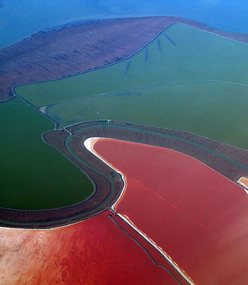 The red color in these ponds is from Dunaliell...
