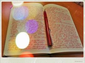 Moleskine Journal + Fountain Pen